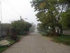 Туман в Октябре.