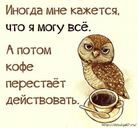133295393_1.jpg