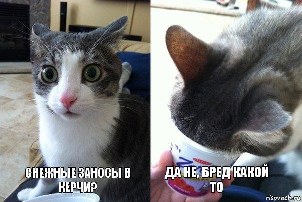 sneg.ru.jpg